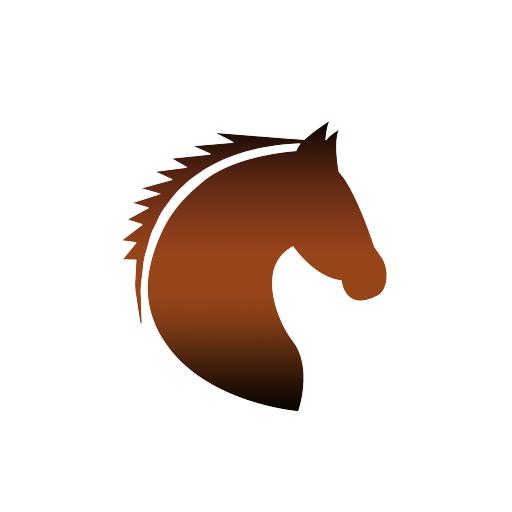 horse riding tours gran canaria